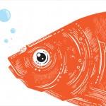 قرمز های دوست داشتنی (دانستنی هایی در مورد نگهداری ماهی قرمز)